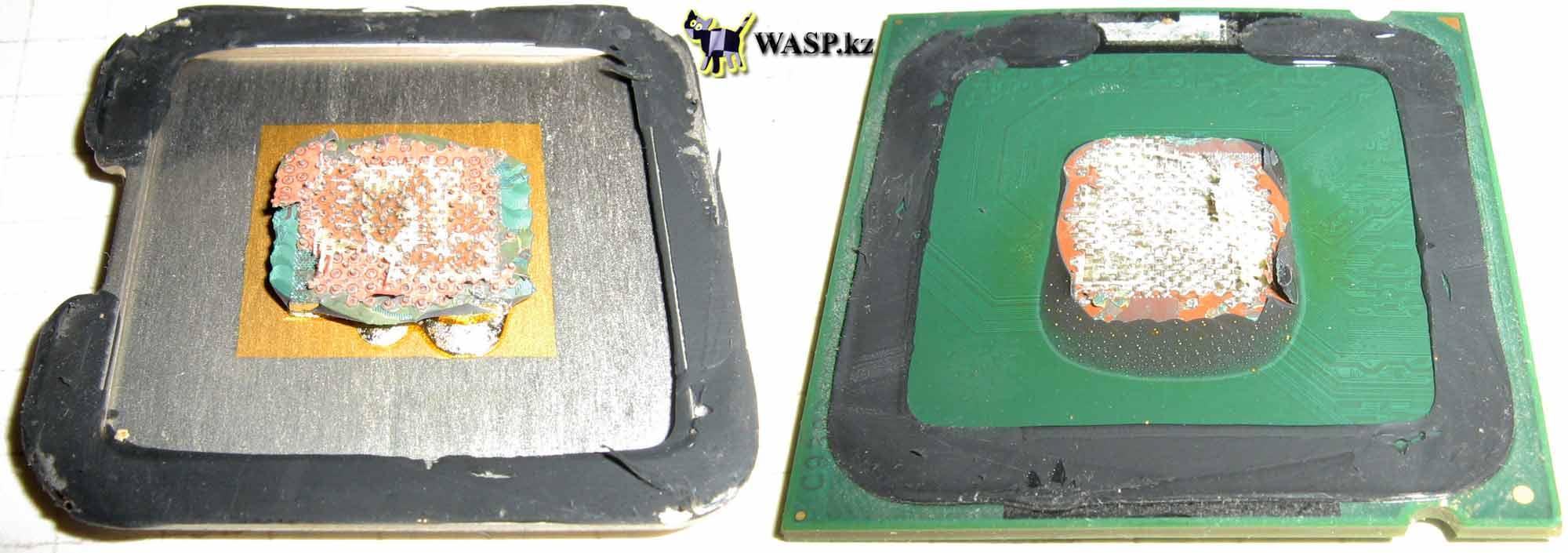 Core 2 Duo E8500 разборка процессора