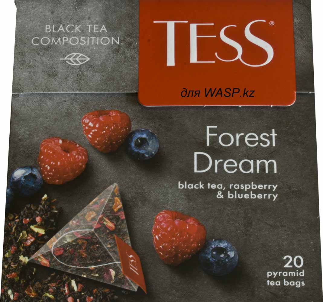 wasp.kz/images/articles/2_tess_forest_dream.jpg